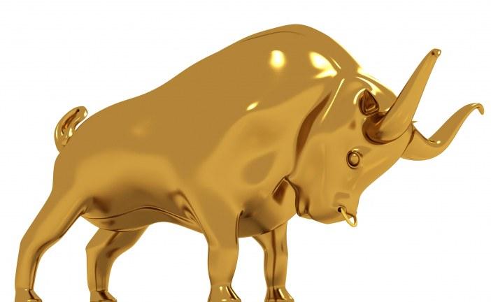 Gold-Bulle erwacht! Überflieger Harmony – mein Rat an alle!