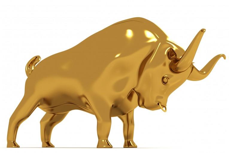 Gold+Silber: Warum der Bulle gerade erst erwacht! Die fünf besten Aktien der Welt!